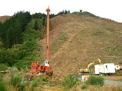 08B-logging-nz.jpg